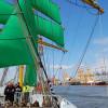 19 neue Segeltörns mit Alexander von Humboldt II