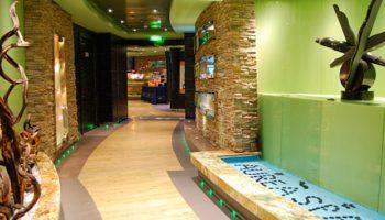 Grün- und Erdtöne an den Wänden, dazu Holz- und Natursteinelemente prägen die Einrichtung des Aurea SPAs © Melanie Kiel