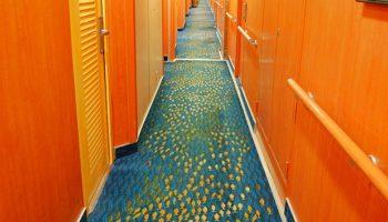 Immer dem Schwarm nach! Auf der Norwegian Jade weisen Fische auf dem Teppich in den Kabinengängen den Weg © Melanie Kiel