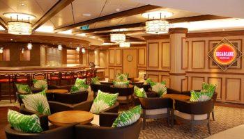 Die besten Mojitos an Bord gibt es wo? Genau, in der Sugarcane Mojito Bar auf Deck 8 © Melanie Kiel