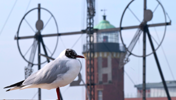 © Nordseeheilbad Cuxhaven GmbH